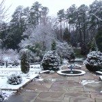 Duke in the Snow 12