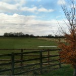 The Road to Bicester 4