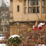 Oxford Snow Storm 36