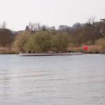 Henley Boat Races 2014