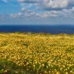 Santorini Day 1